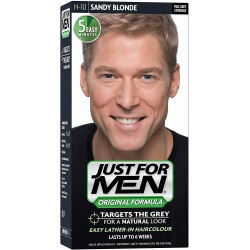 Just For Men H-10 Blond Popielaty Blond