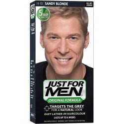 Just For Men H-10 Blond Popielaty Blond